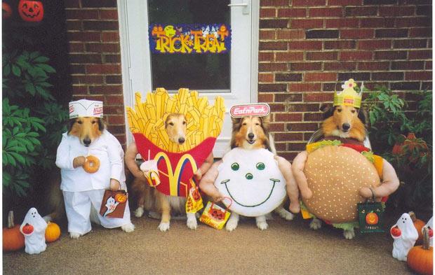 ファストフードに扮した可愛い犬達