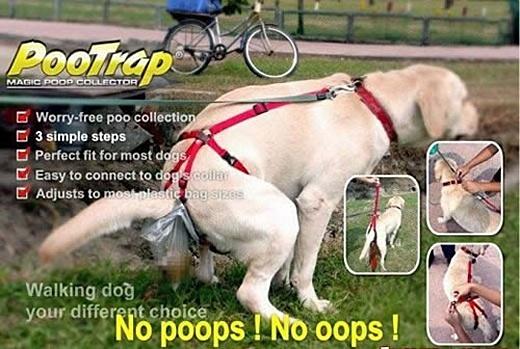 poop-trap-sample