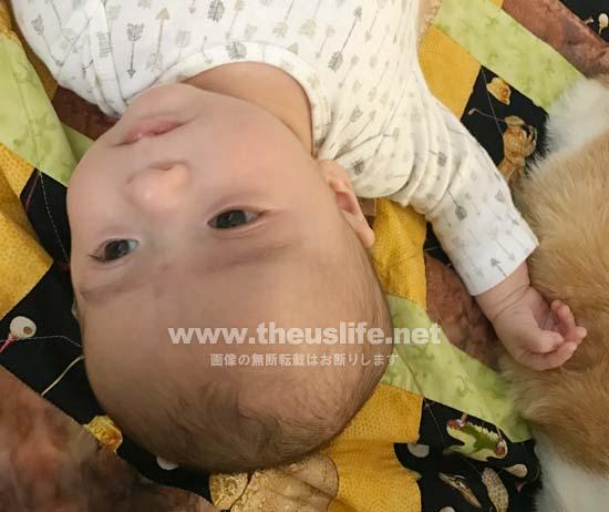 両目が二重まぶたの日米ハーフの生後二ヶ月目の赤ちゃんの顔