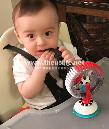 生後八ヶ月の日米ハーフの両目二重まぶたになった赤ちゃんの顔