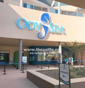 スコッツデールにあるOdySea Aquarium