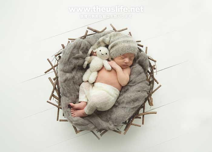 ニューボーンフォトカゴの中の可愛い赤ちゃん