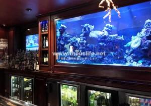 フロリダのレストラン Moon Fish