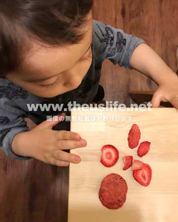 トレーダージョーズのフリーズドライいちごを食べる子供